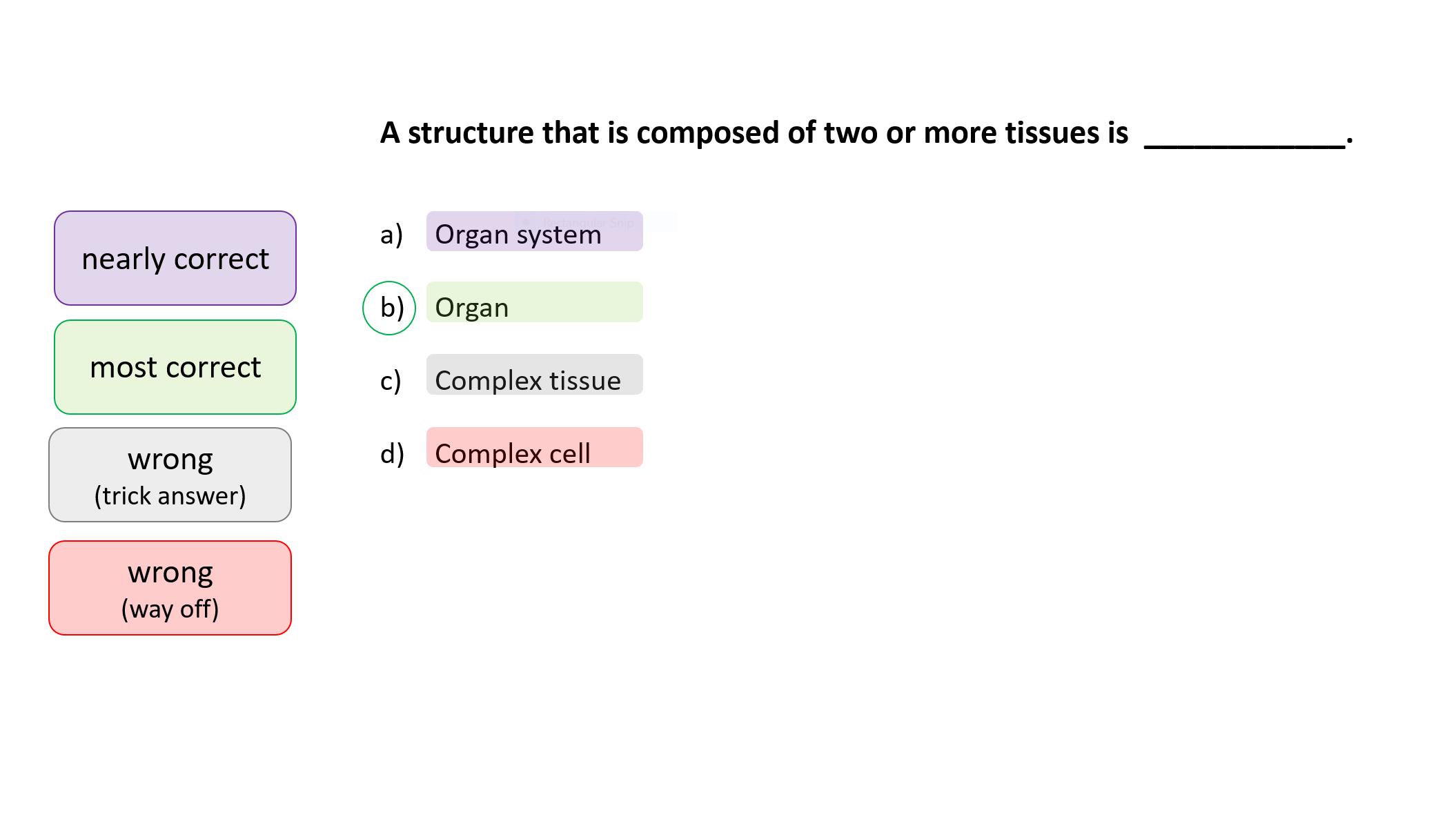 Exams multiple choice